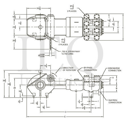 GASO 1757 - 1759 Duplex Piston Pump